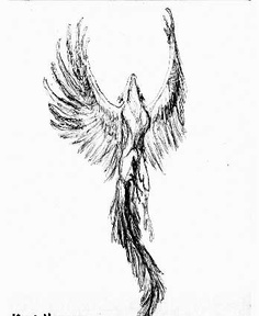 Fresh Phoenix Tattoo Design