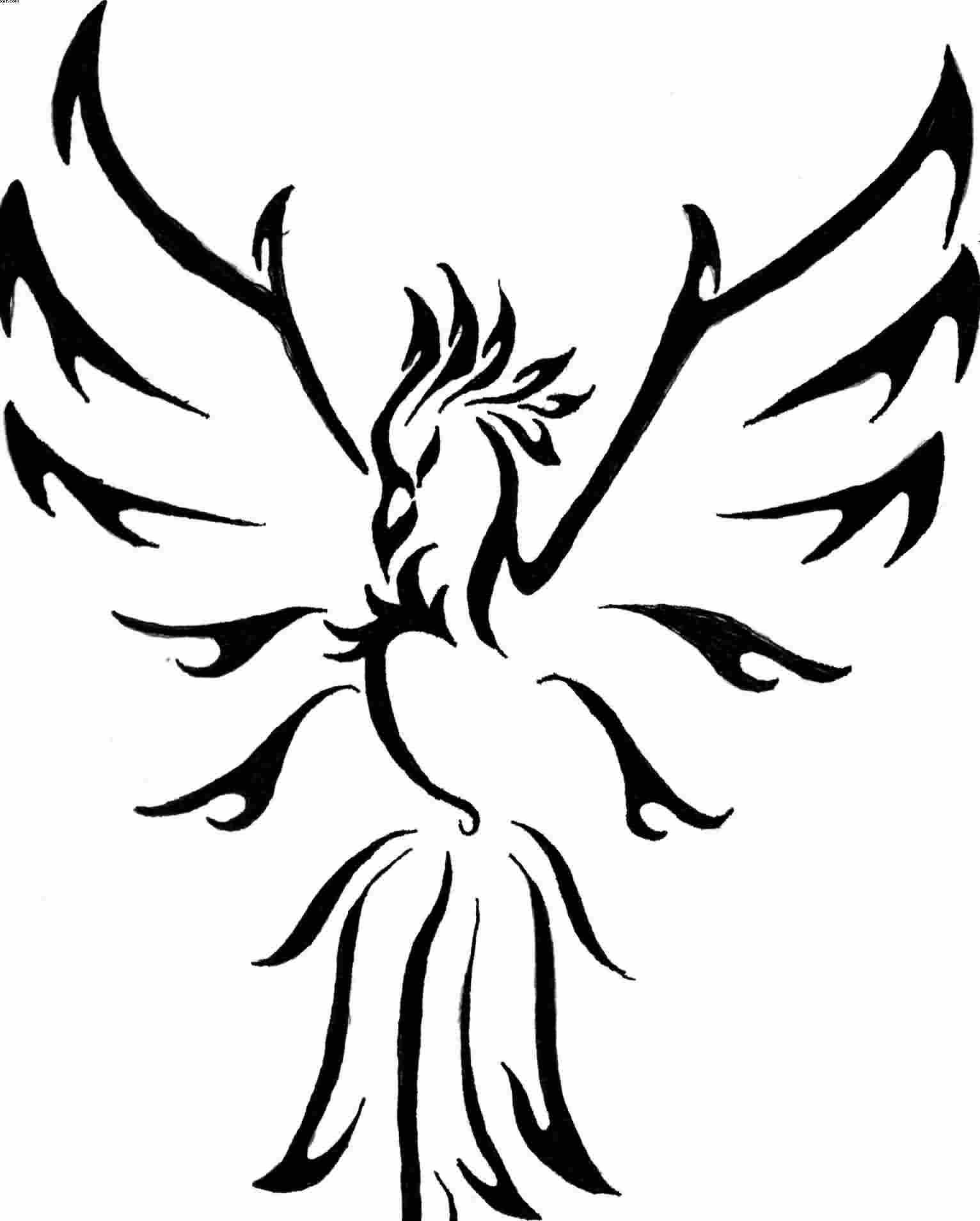 Fresh Tribal Phoenix Tattoo Sample