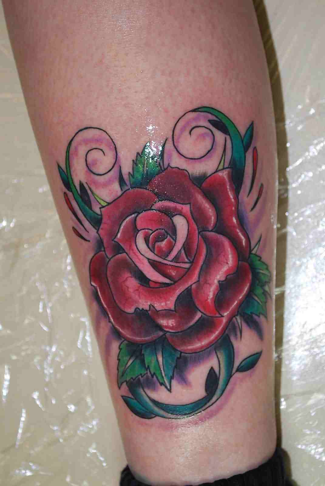 Glorious Rose Tattoo On Leg