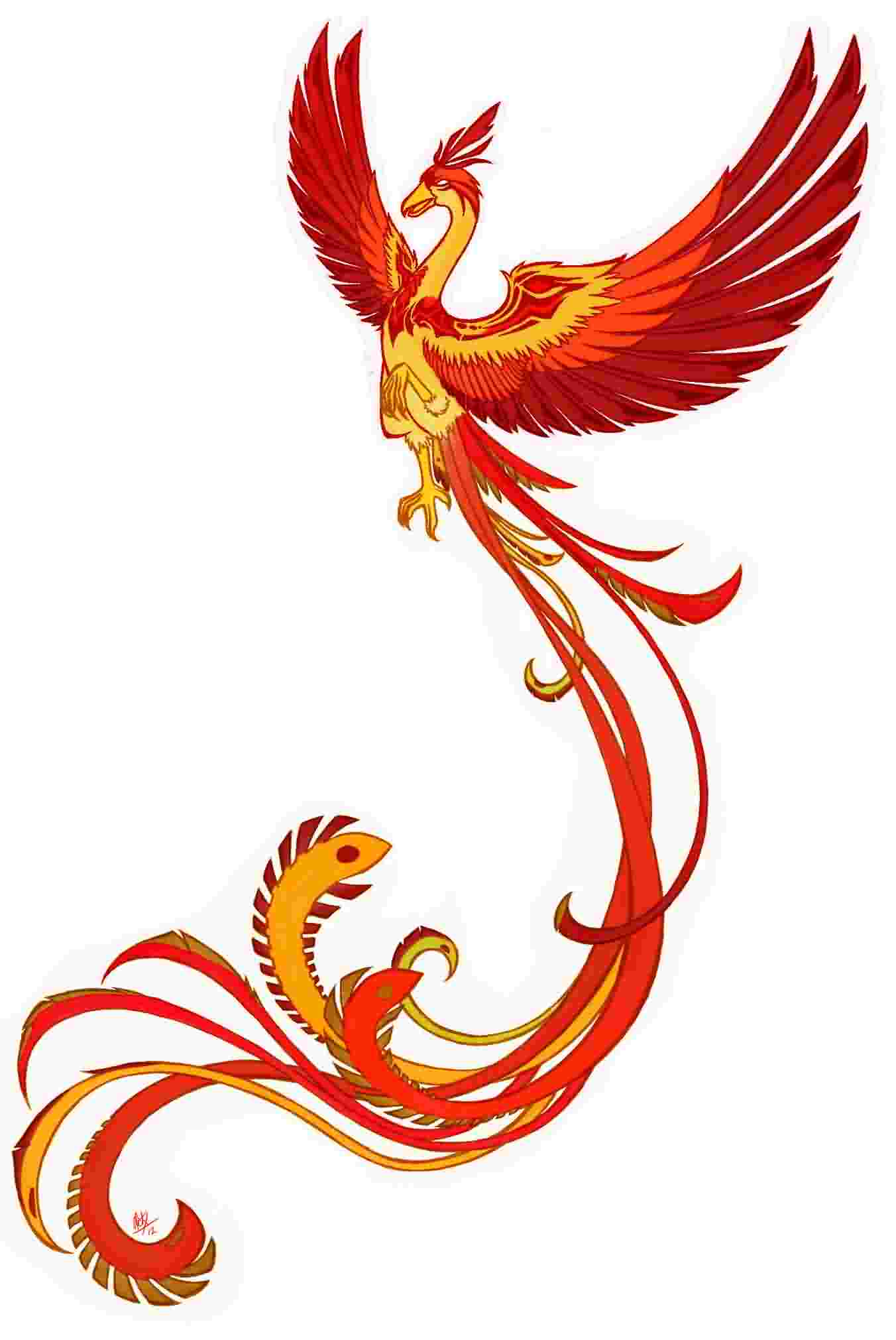 Gorgeous Slim Phoenix Tattoo Design