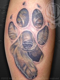 Great Bear Face Paw Tattoo