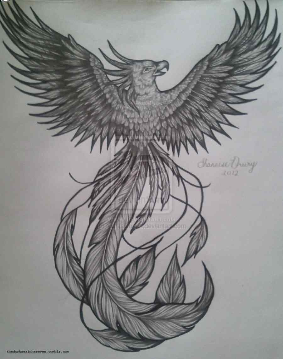 Grey Phoenix Tattoo Flash