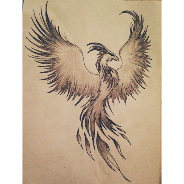 Grey Phoenix Tattoo Poster