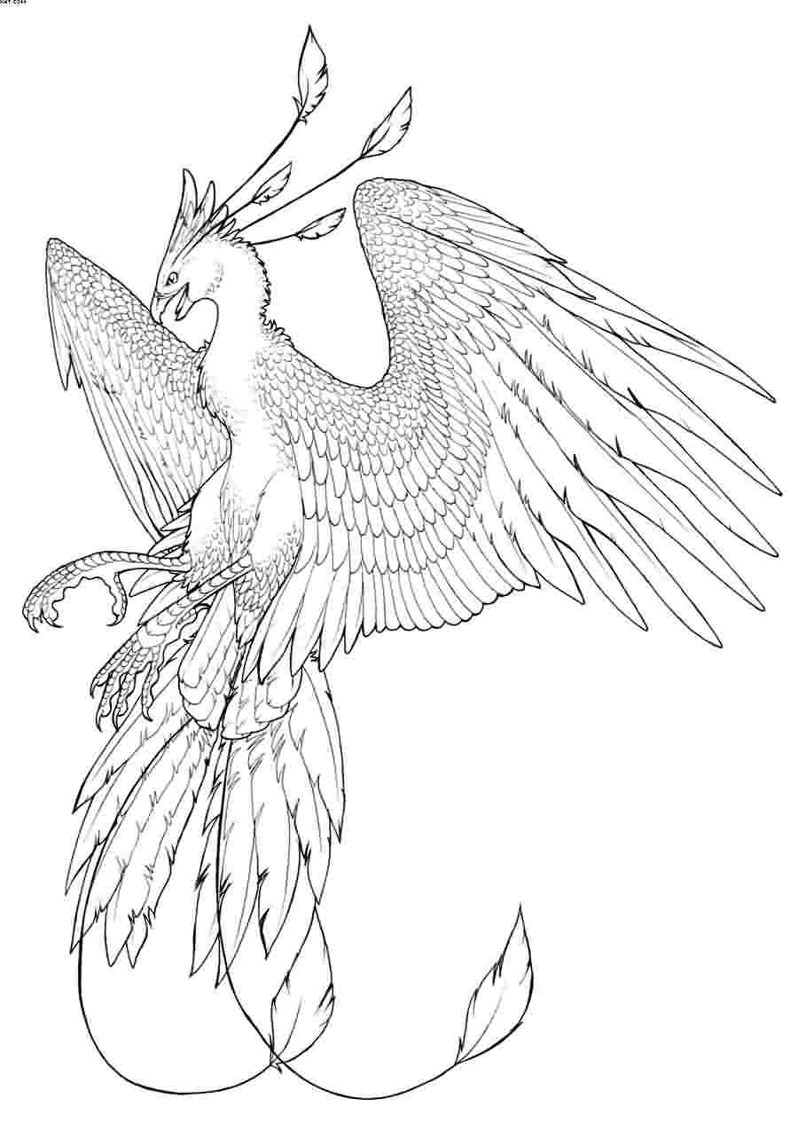Grey Phoenix Tattoo Sample