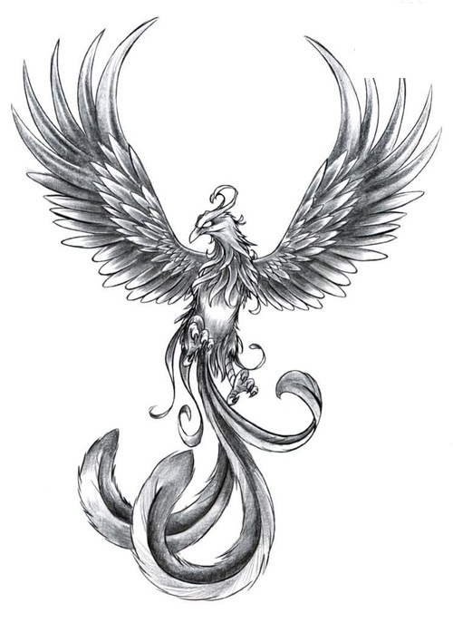 Grey Phoenix With Wings Open Tattoo Design