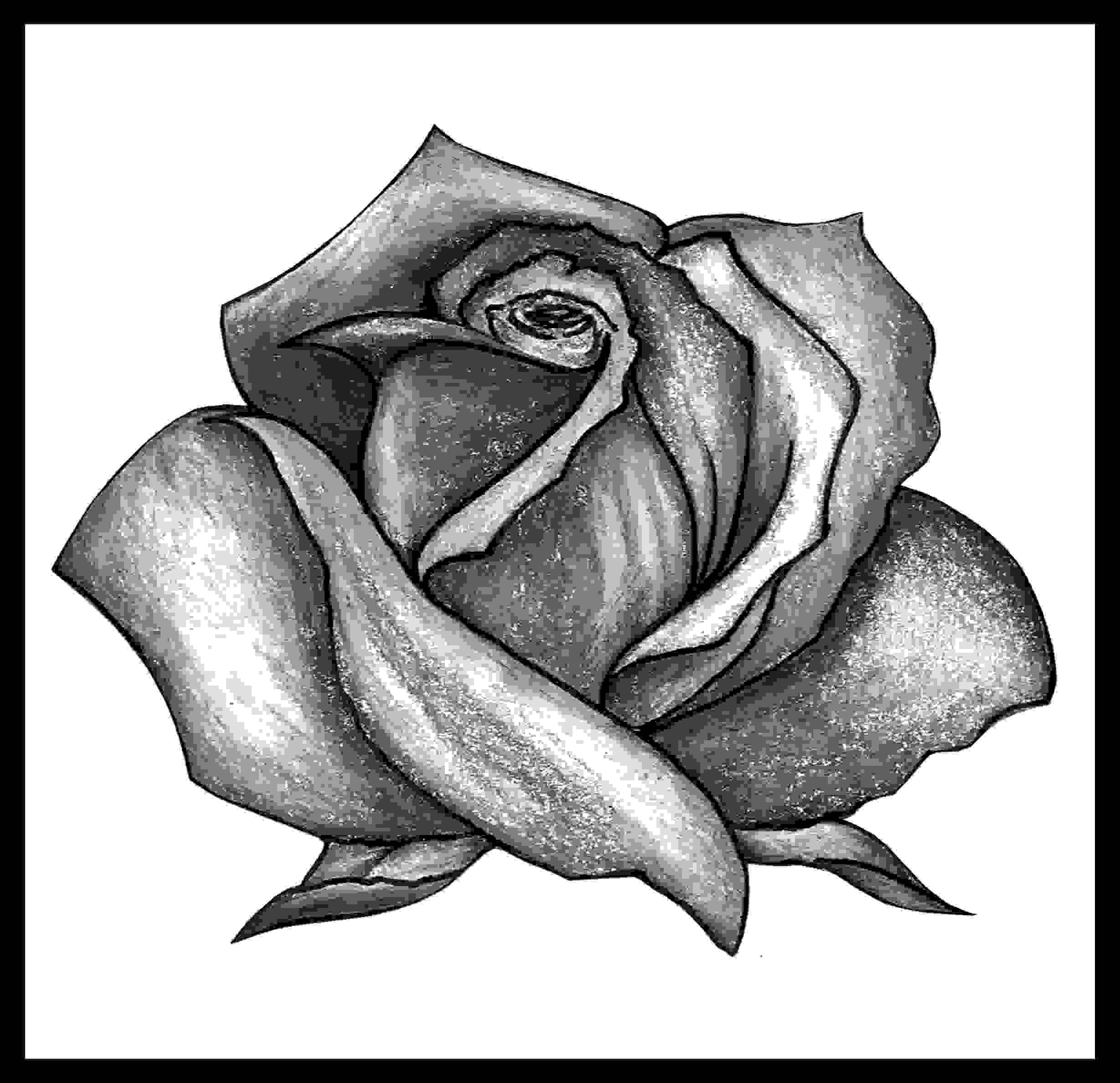 Grey Rose Tattoo Photo