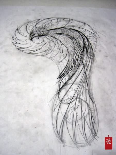 Japanese Phoenix Tattoo Sketch