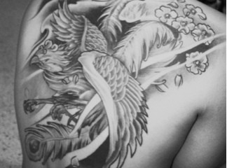 Japanese Phoenix With Cherry Blossoms And Moon Tattoos