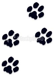 Latest Black Dog Paw Print Tattoos