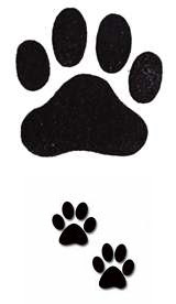 Latest Black Ink Paw Print Tattoos