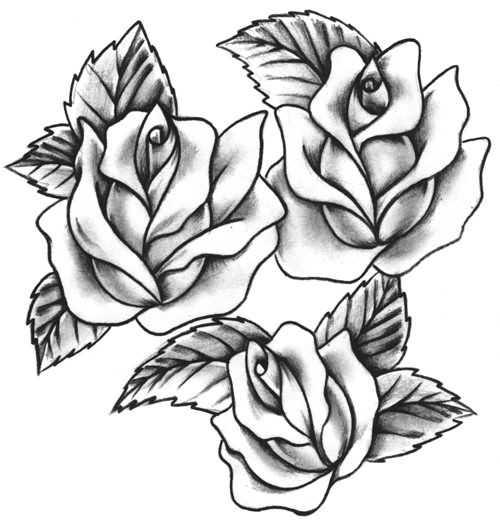 Latest Three Roses Tattoo Designs