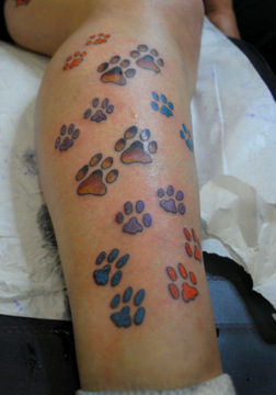 Lovely Colored Paw Prints Tattoos On Leg