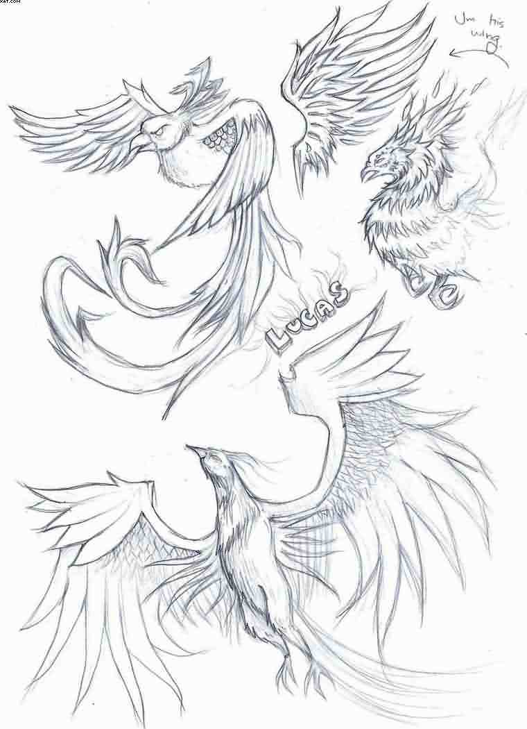 Lucas Phoenix Tattoos Sketch