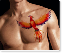New Clean Phoenix Tattoo On Chest