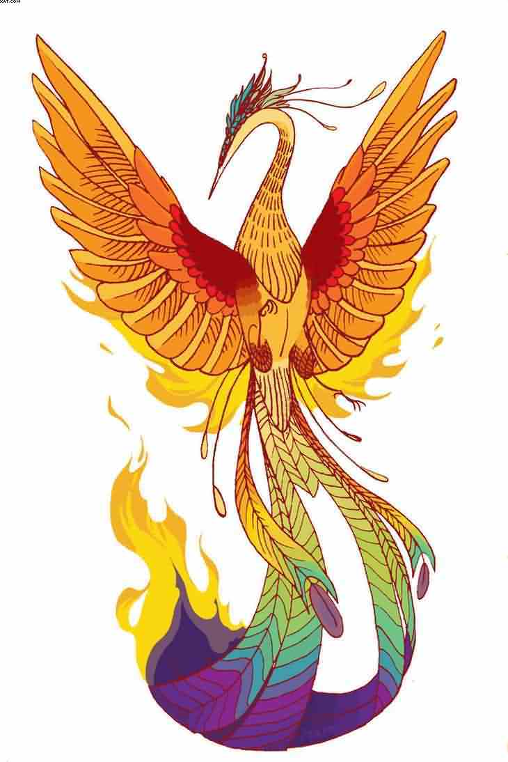 New Colorful Phoenix Tattoo Desgin