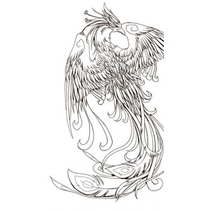 New Design Of Phoenix Tattoo