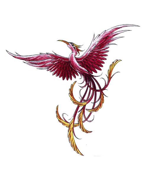 New Phoenix With Long Nose Tattoo Design