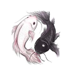 Newest Koi Fish Pisces Symbol Tattoo Stencil