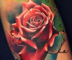 Once Again Realistic Rose Tattoo