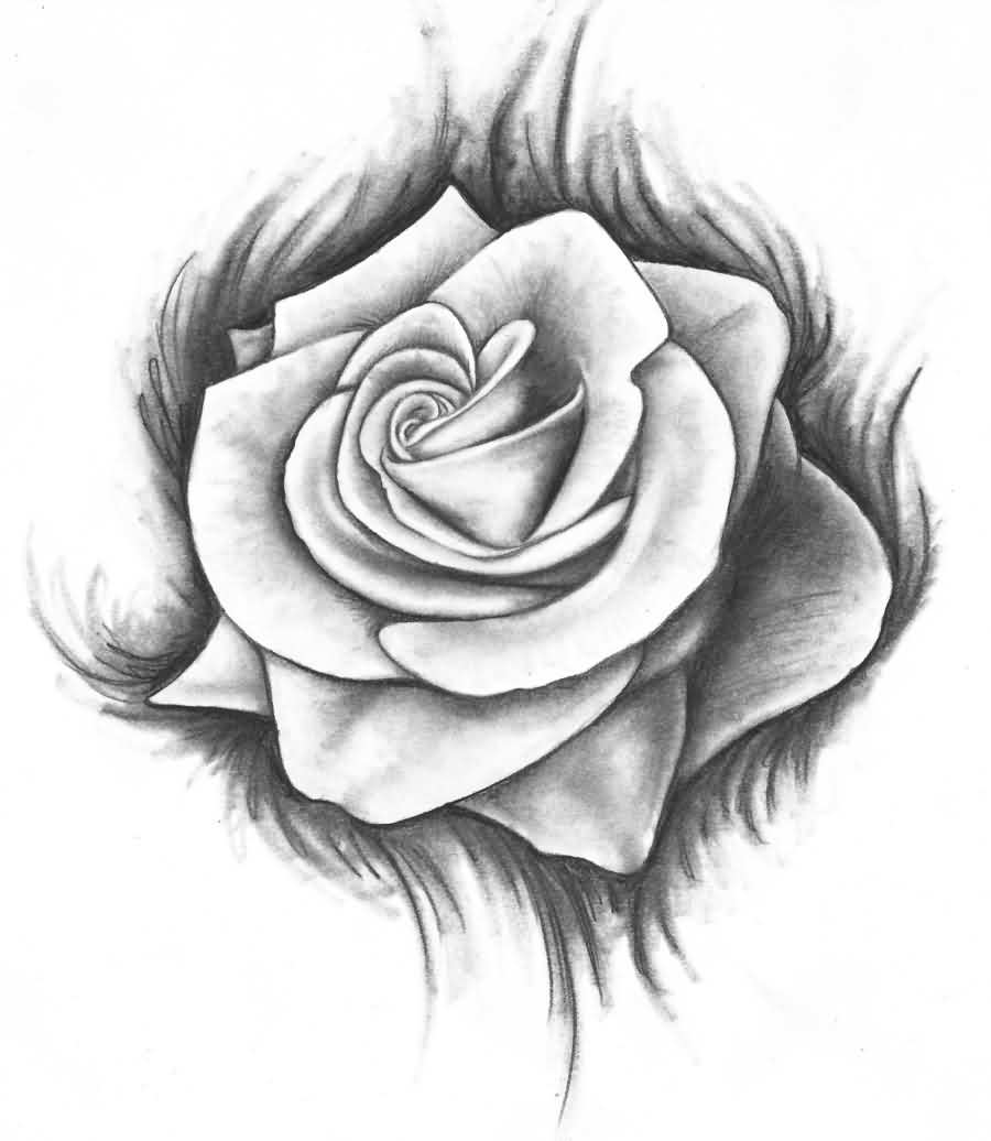 Once Again Rose Tattoo Sample