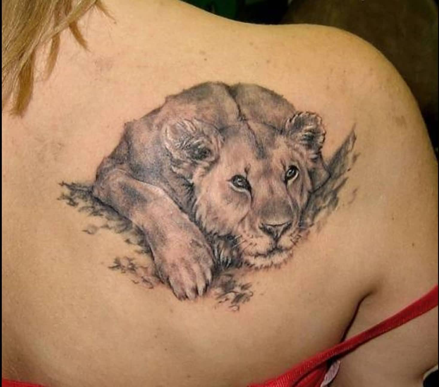 Original Grey Lion Tattoo Behind Right Shoulder
