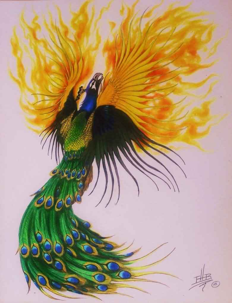Peacock Phoenix And Fire Tattoo Design