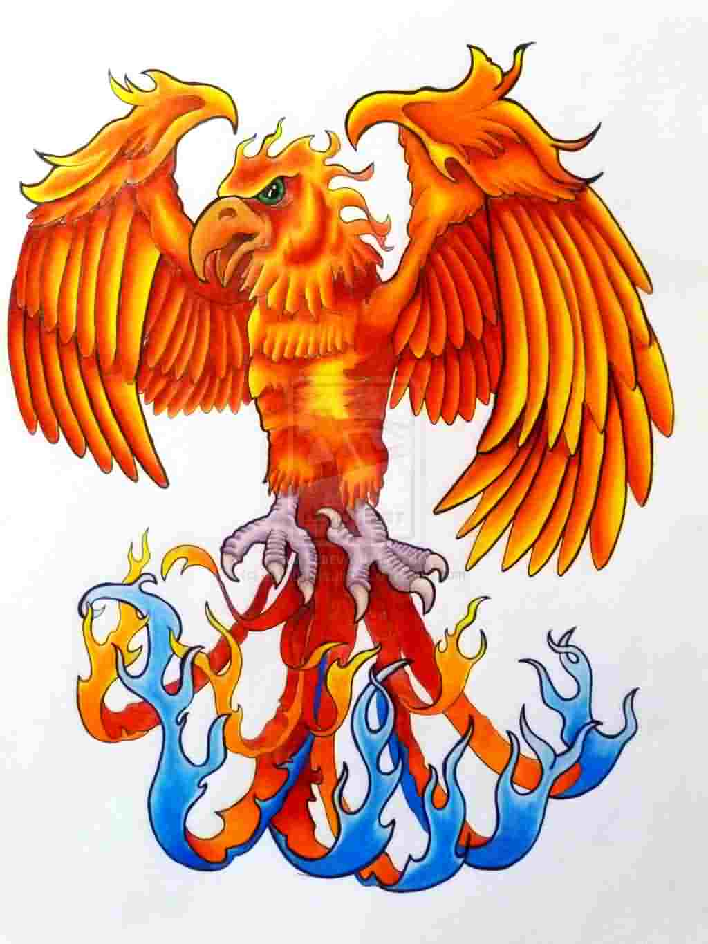 Phoenix And Flames Tattoo Designs