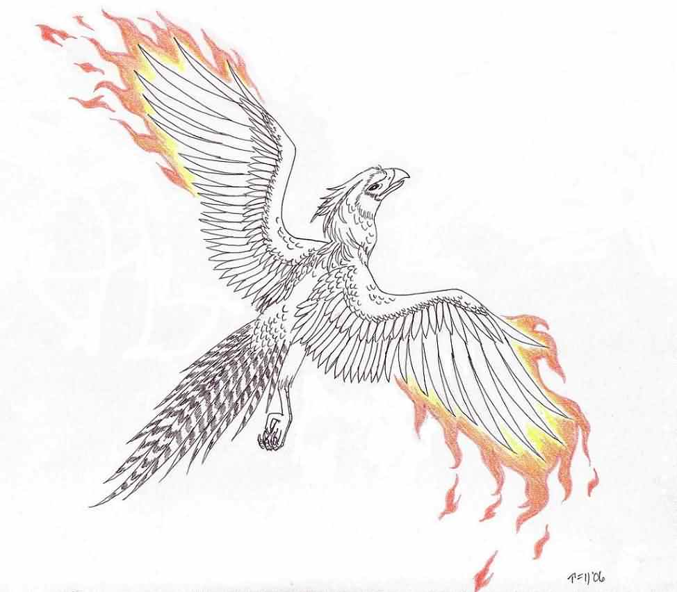 Phoenix And Flaming Wings Tattoo Sample