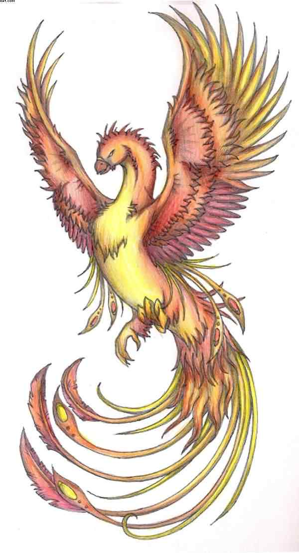 Phoenix Colored Tattoo Stencil