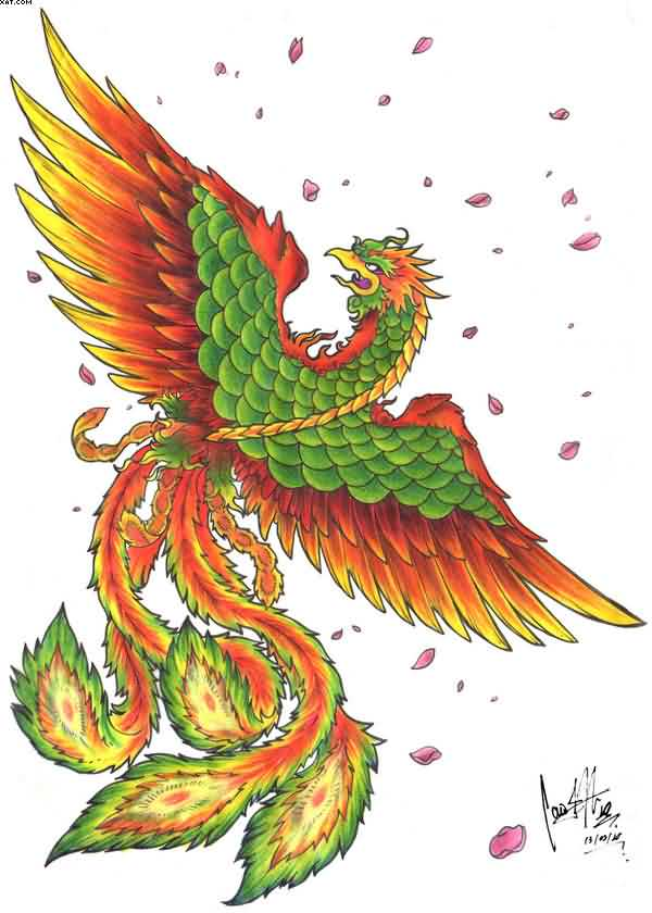 Phoenix Colorful Tattoo Design