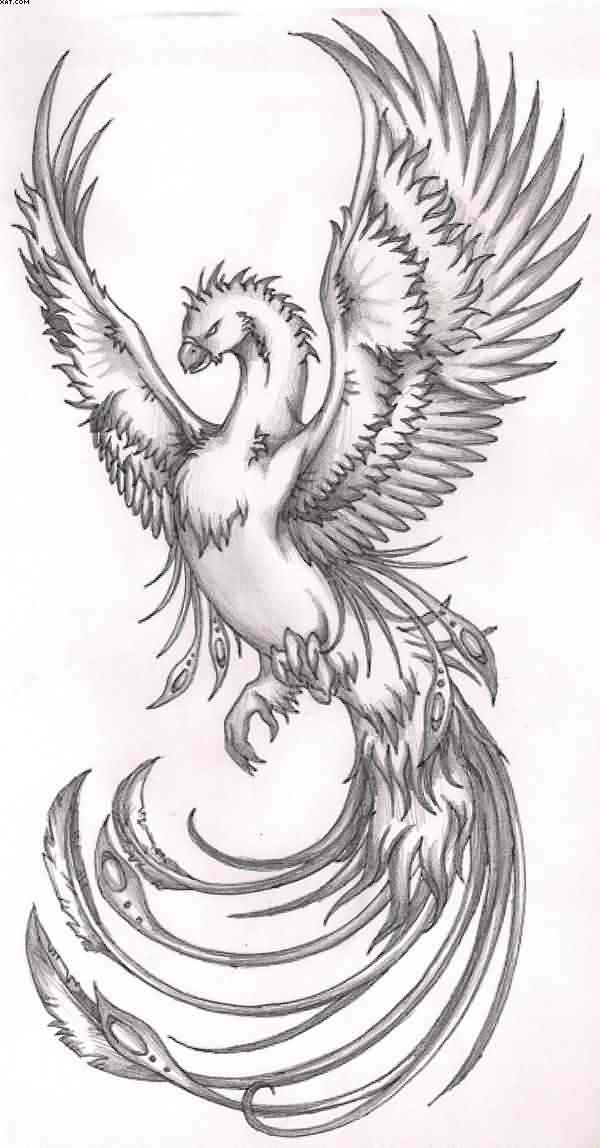 Phoenix Grey Tattoo Design