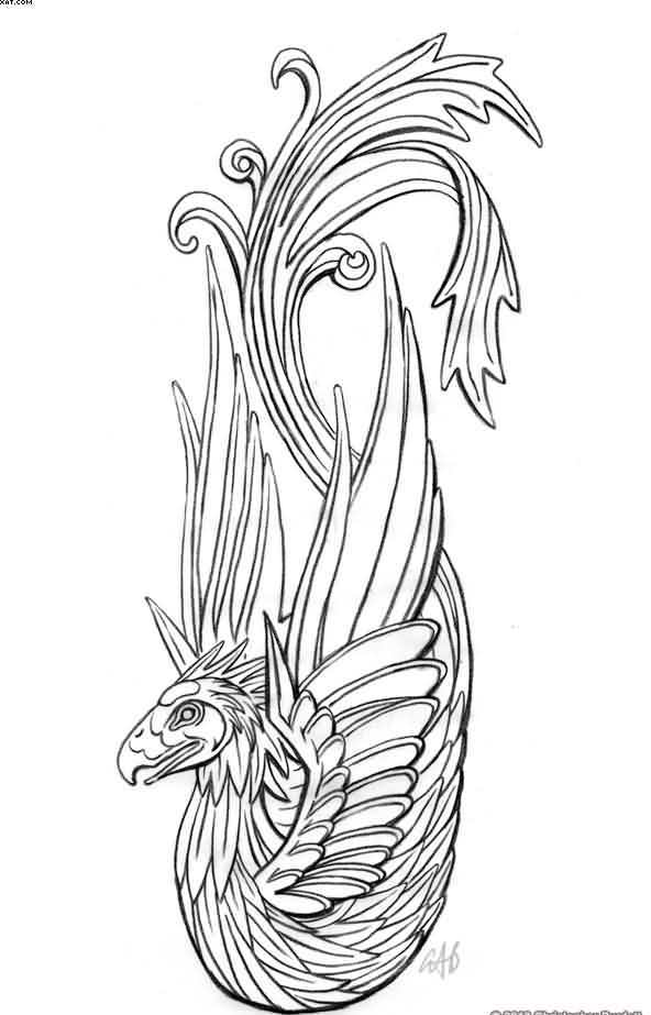 Phoenix Outline Tattoo Model