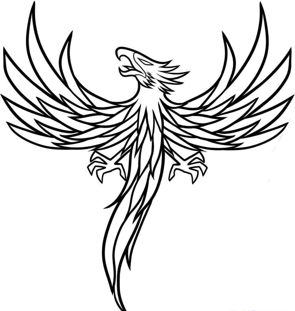 Phoenix Outline Tattoo Sample