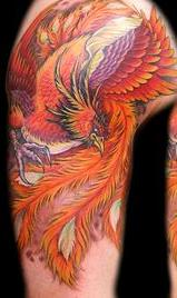 Phoenix Shoulder Tattoos