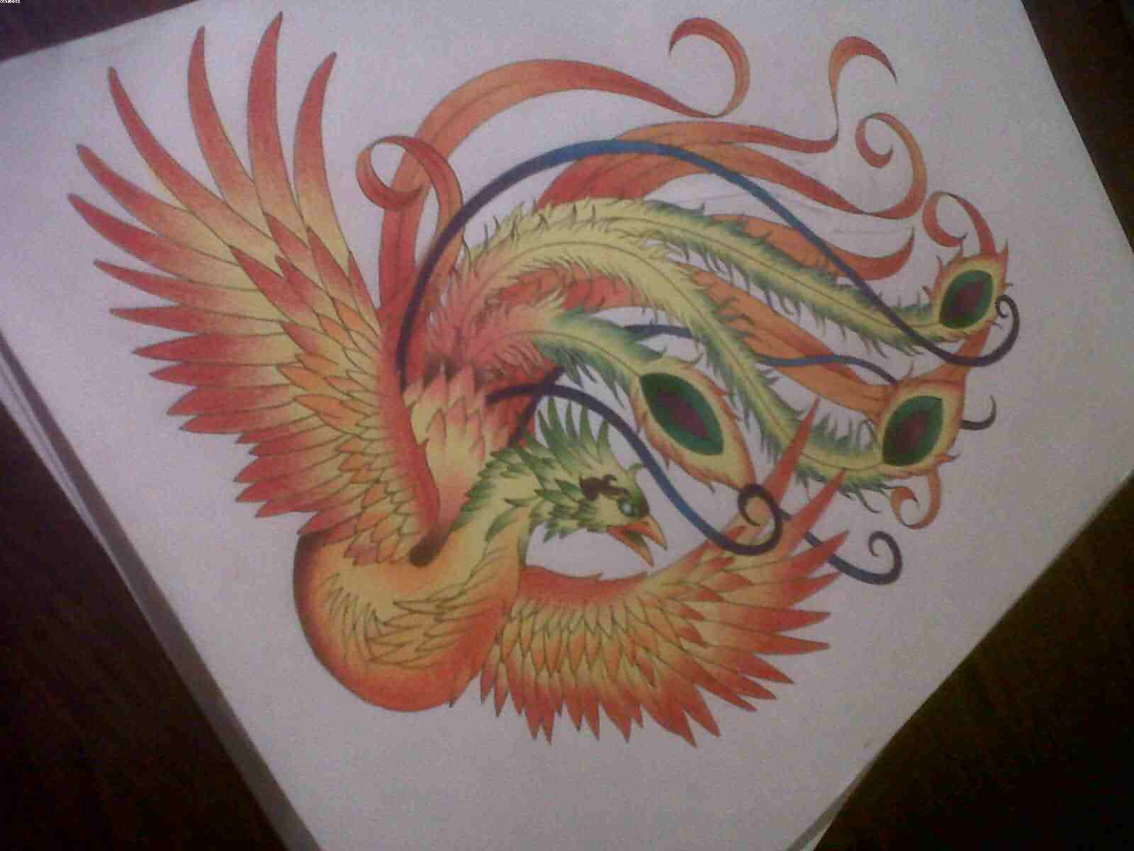 Phoenix Tattoo Design Page