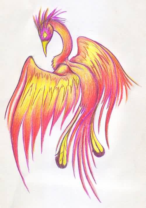 Phoenix Tattoo Drawing