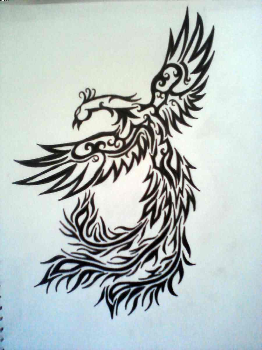 Phoenix Tribal Design Tattoo