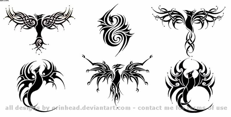 Phoenix Tribal Tattoos Set