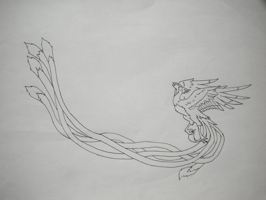 Phoenix With Long Tail Tattoo Design