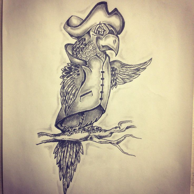 Pirate Parrot Sitting On Branch Tattoo Sketch