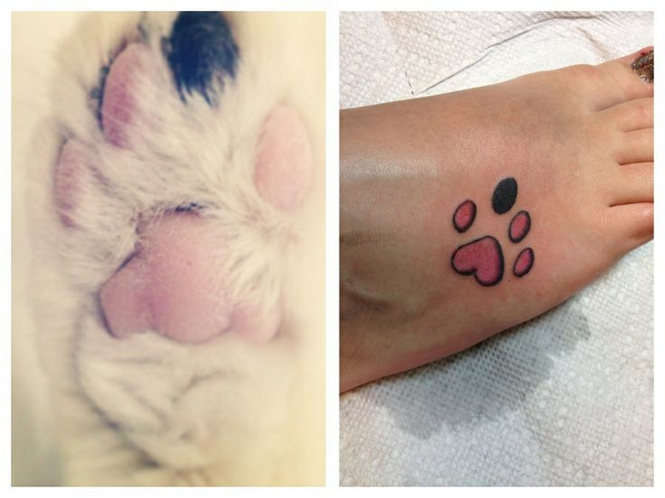 Pretty Puppy Paw Tattoo On Foot