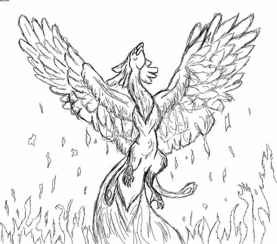 Rising Phoenix And Flames Tattoo Drawing