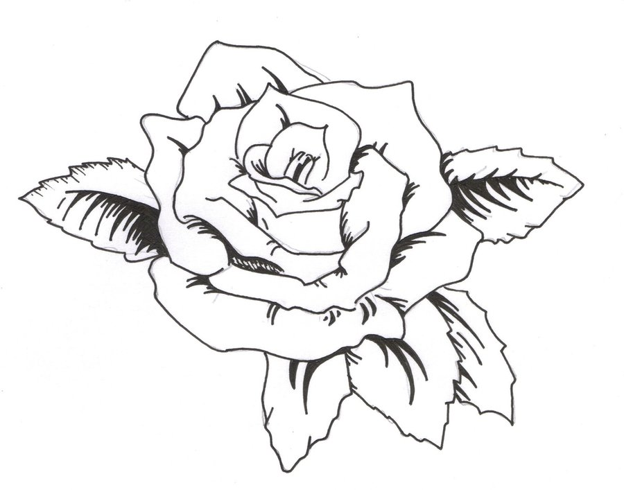 Rose Outline Tattoo Stencil