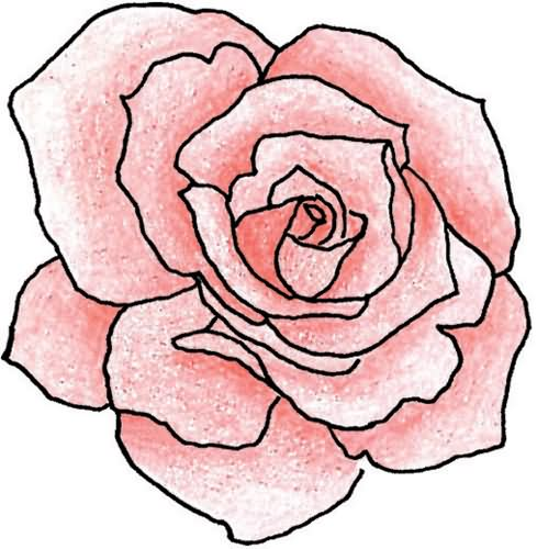 Rose Tattoo Sample