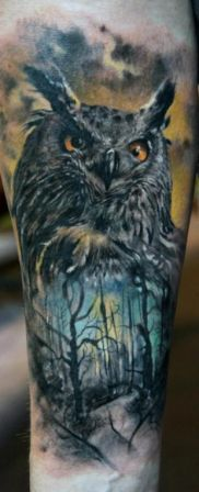 3D Owl Nature Scene Tattoo On Sleeve