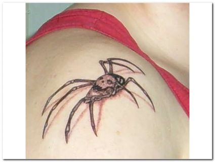Cool Grey 3D Spider Skull Tattoo