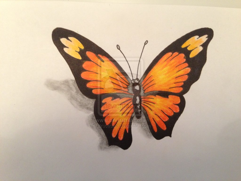 3D Butterfly Tattoo Flash