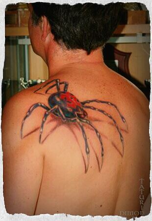 3D Spider Tattoo Photo