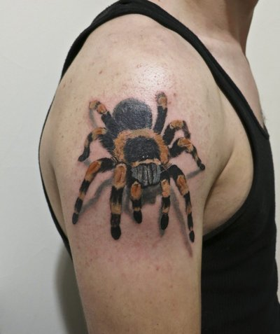 3D Tarantula Spider Tattoo On Right Shoulder
