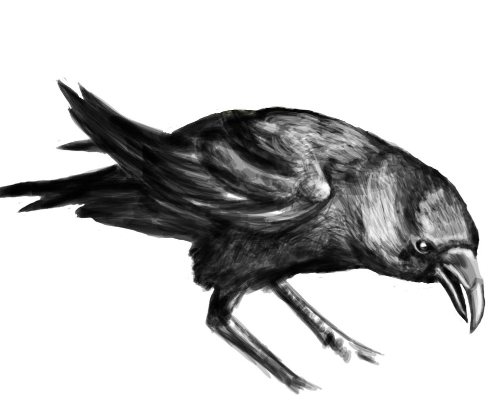 A Crow Tattoo Design